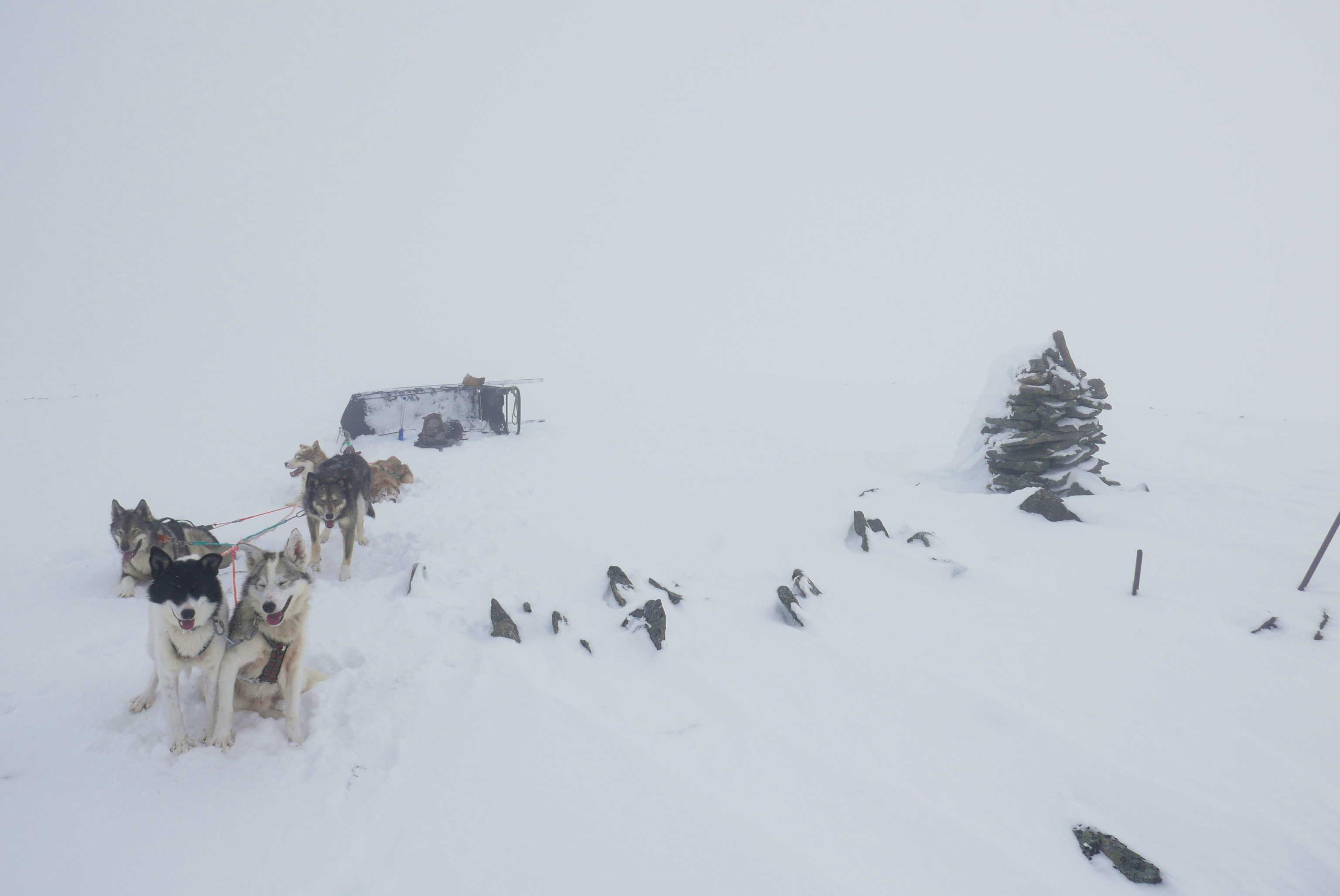 Au sommet dans le brouillard
